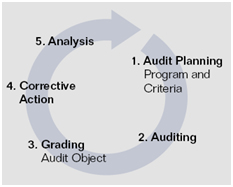 auditing process